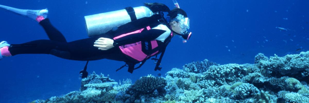 Dive in Okinawa