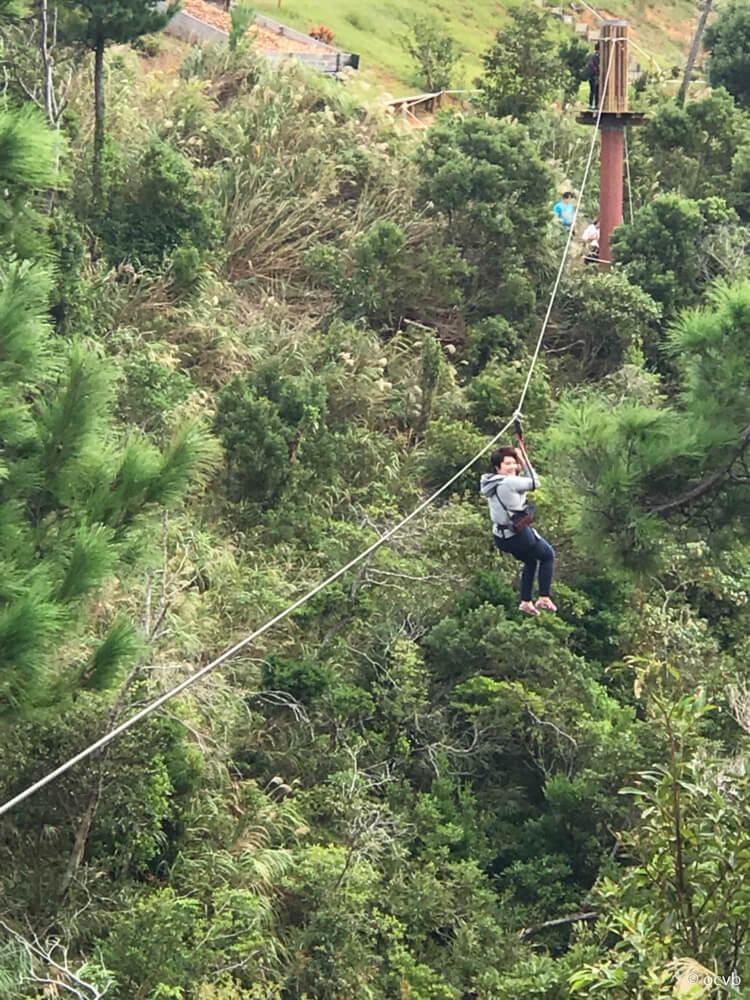 Blog Forest Adventure In Onna Visit Okinawa Japan
