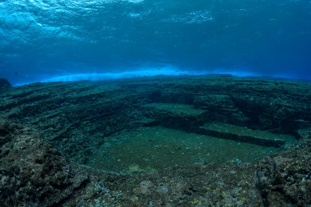 Diving Guide Image Yonaguni