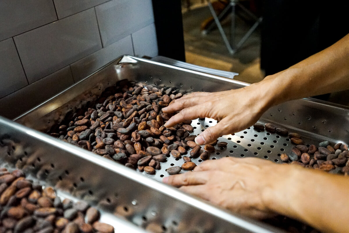 Timeless Chocolate Cocoa beans