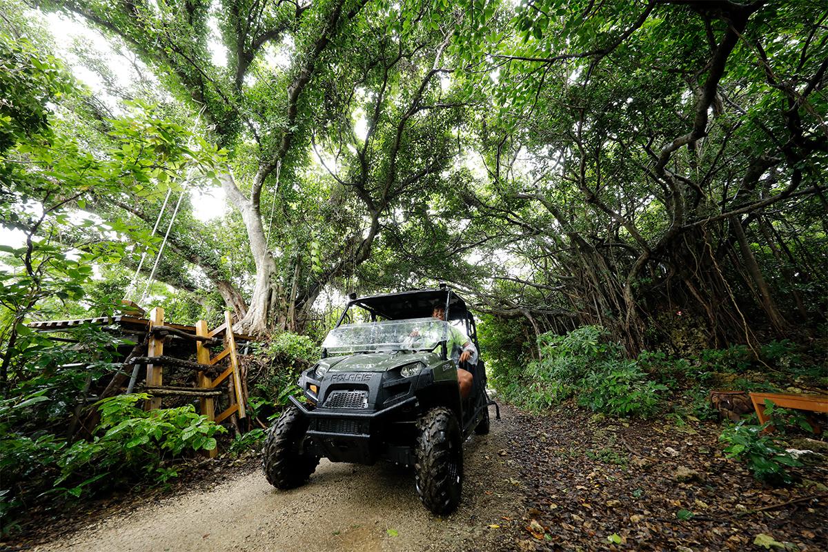 Gajumarunture - Jungle Buggy Image